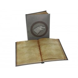 Notebook Game of Thrones - Stark Lumineux
