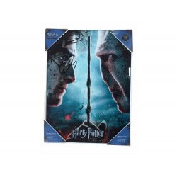 Poster en Verre Harry Potter - Harry VS Voldemort 30X40cm