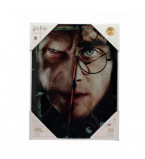 Poster en Verre Harry Potter - Voldarry 30X40cm